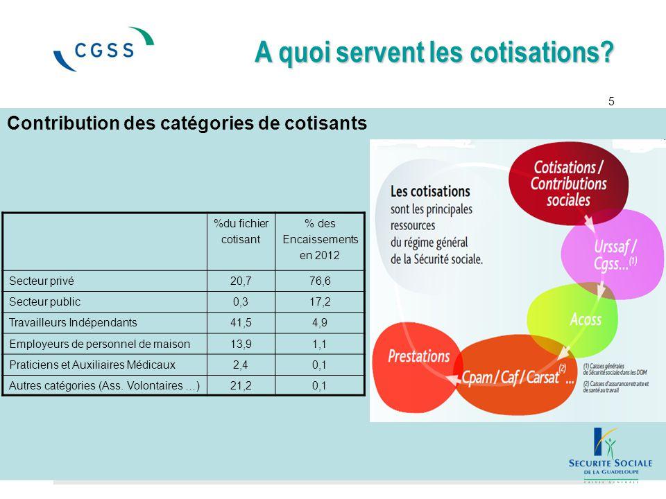 Contribution des catégories de cotisants