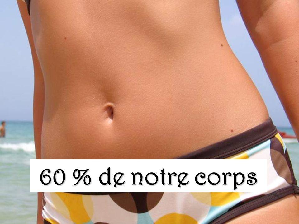 60 % de notre corps