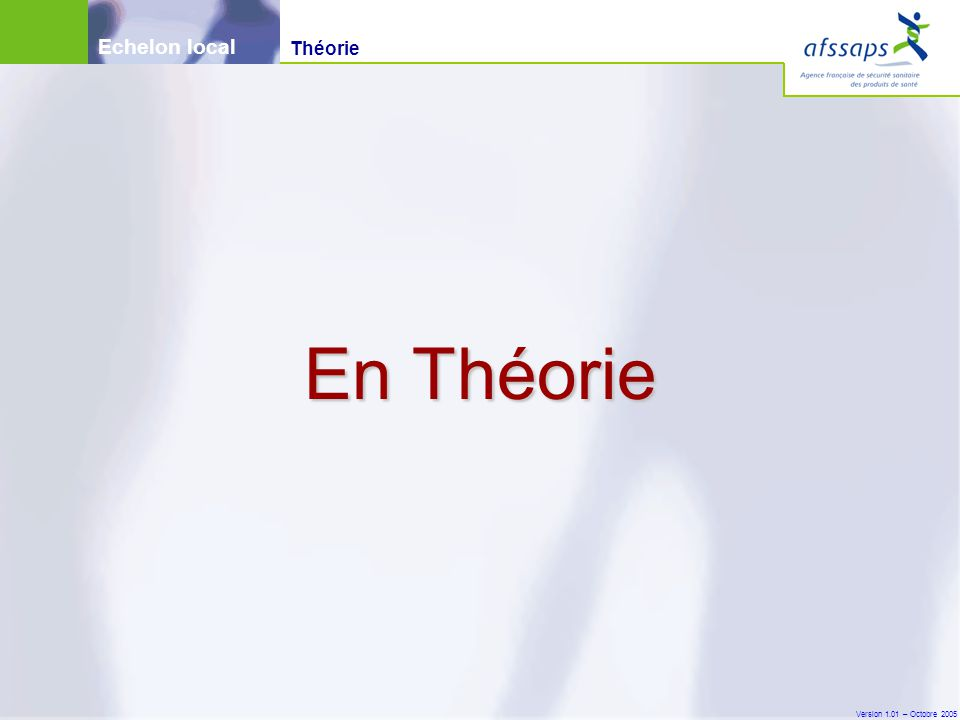 Echelon local Théorie En Théorie Version 1.01 – Octobre 2005