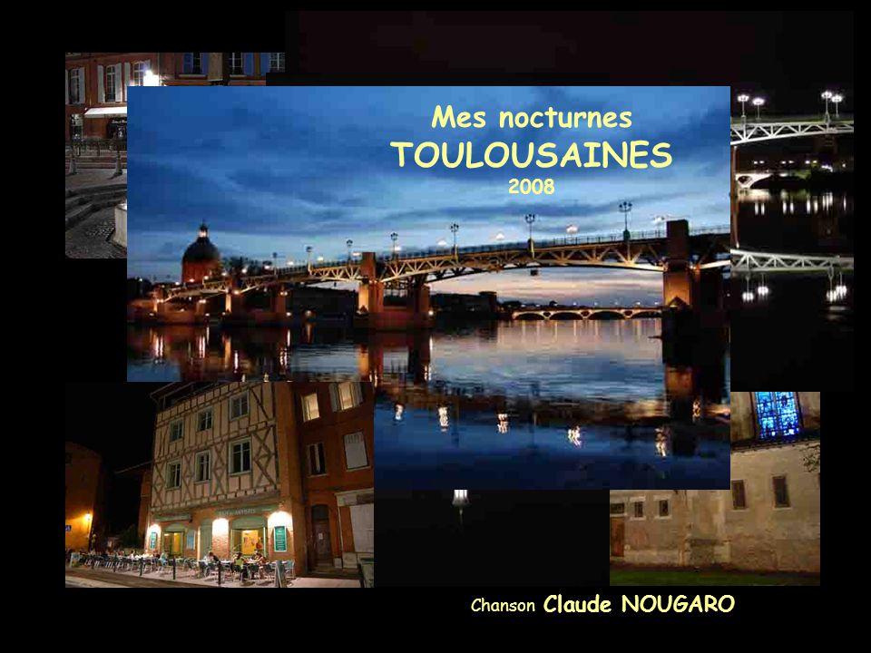 Mes nocturnes TOULOUSAINES 2008