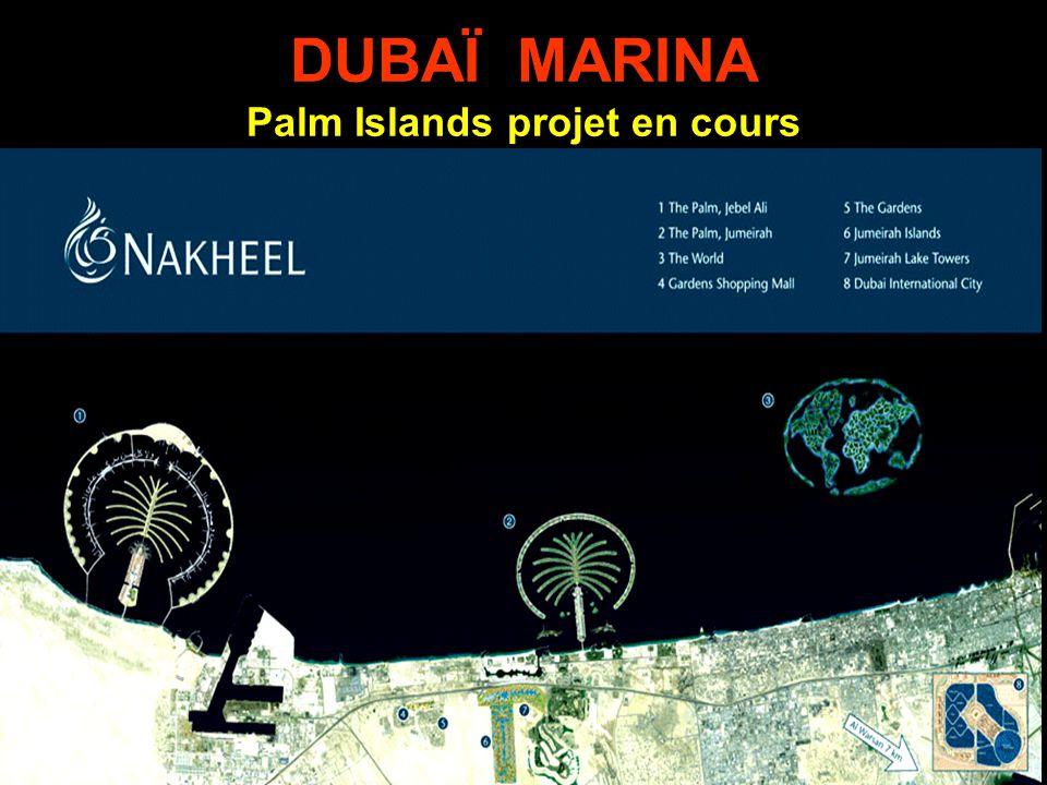 Palm Islands projet en cours
