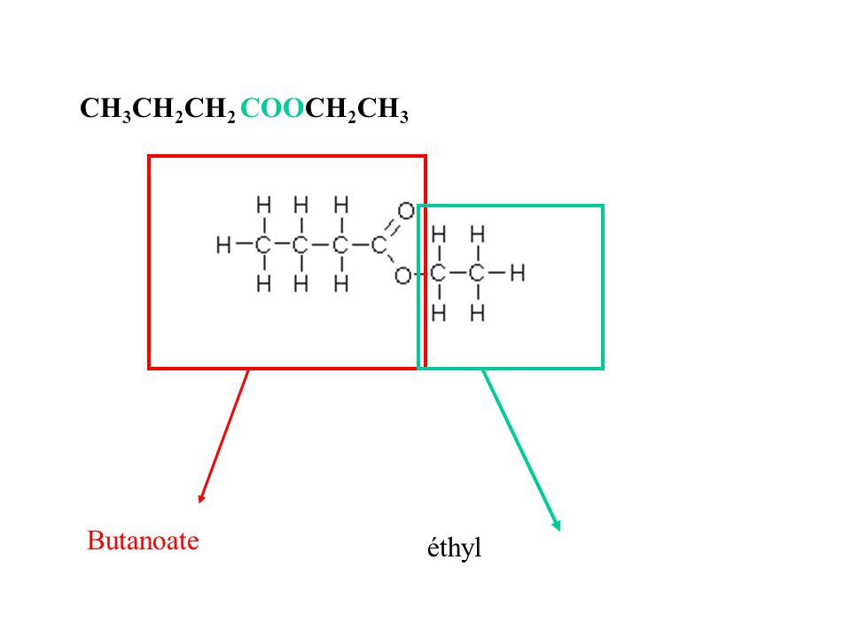 CH3CH2CH2 COOCH2CH3 Butanoate éthyl