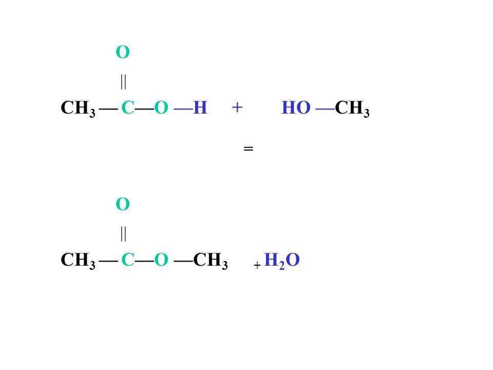 O  CH3 — C—O —H + HO —CH3 = O  CH3 — C—O —CH3 + H2O