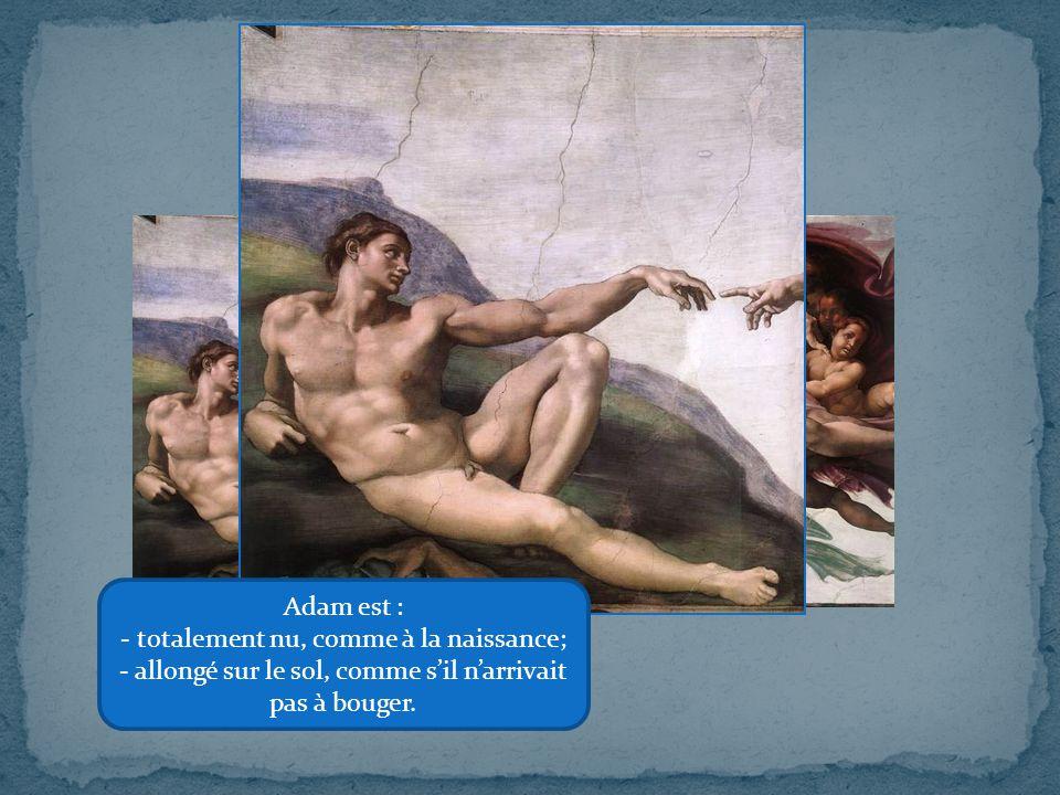 Dieu et l'Homme Adam est : totalement nu, comme à la naissance;