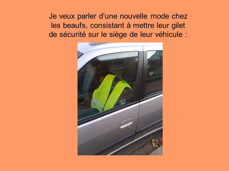 Je veux parler d'une nouvelle mode chez les beaufs, consistant à mettre leur gilet de sécurité sur le siège de leur véhicule :