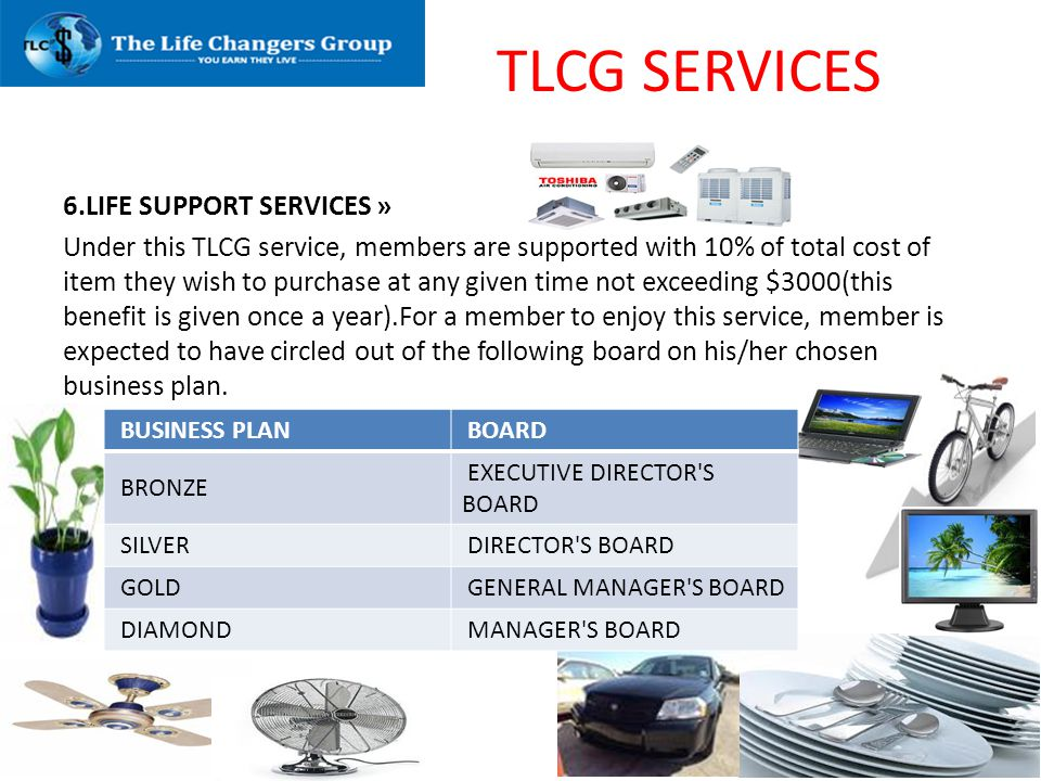 TLCG SERVICES 6.LIFE SUPPORT SERVICES »
