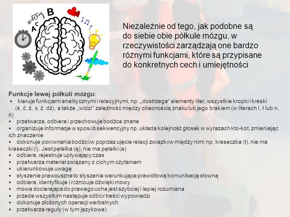 Niezależnie od tego, jak podobne są do siebie obie półkule mózgu, w rzeczywistości zarządzają one bardzo różnymi funkcjami, które są przypisane do konkretnych cech i umiejętności