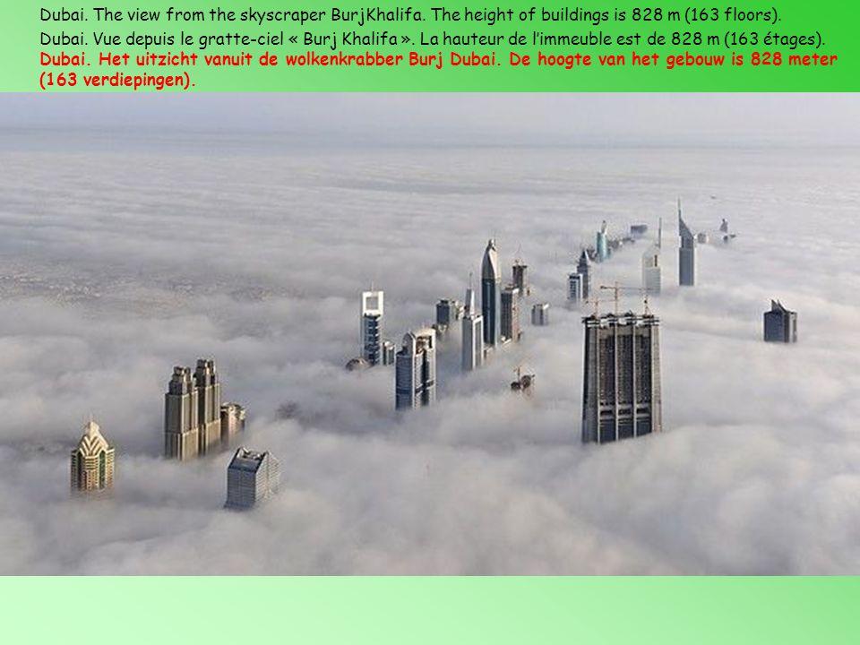 Dubai. The view from the skyscraper BurjKhalifa