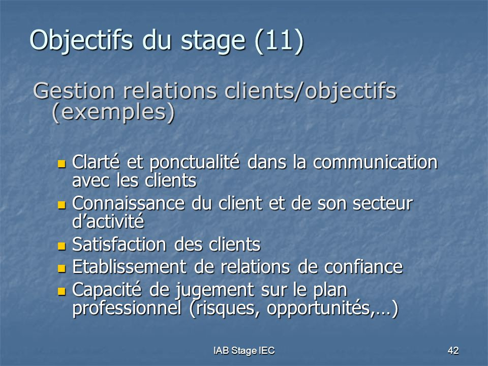 Objectifs du stage (11) Gestion relations clients/objectifs (exemples)