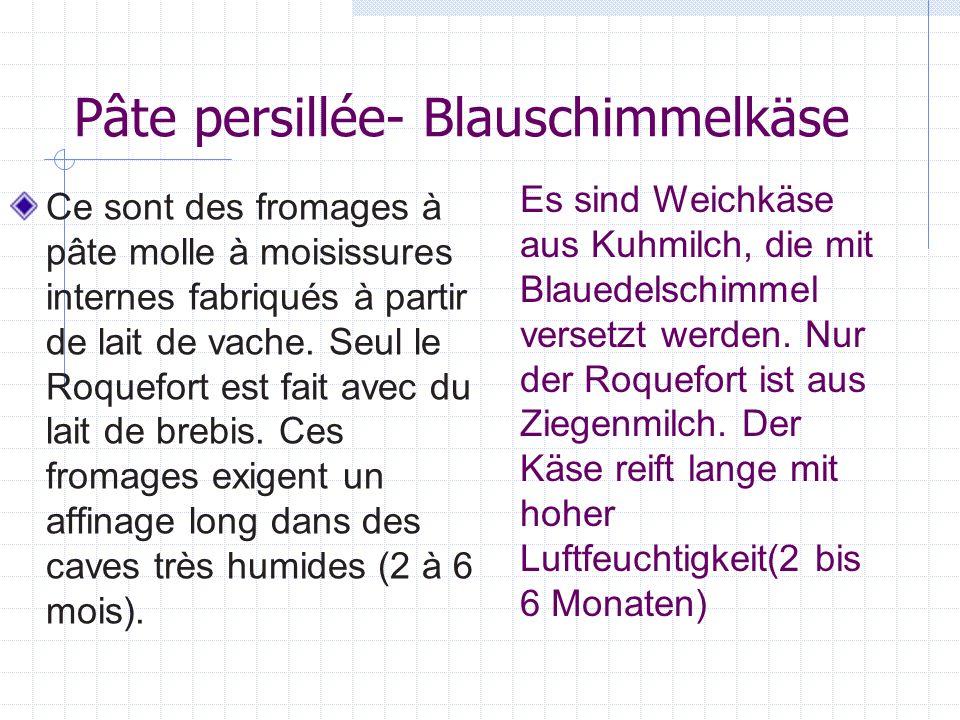 Pâte persillée- Blauschimmelkäse