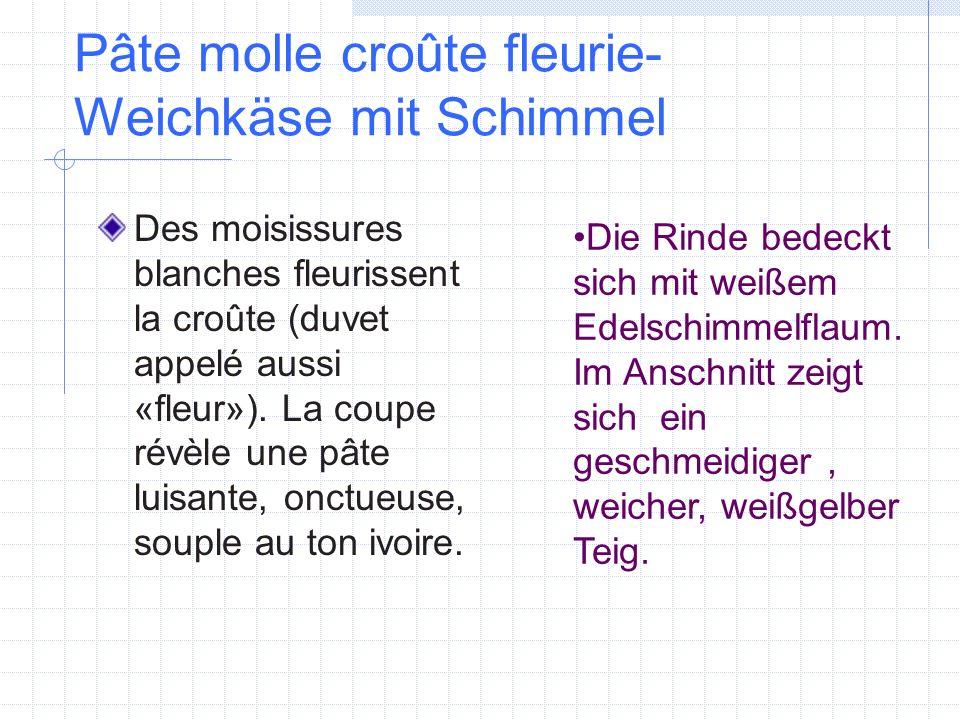 Pâte molle croûte fleurie-Weichkäse mit Schimmel