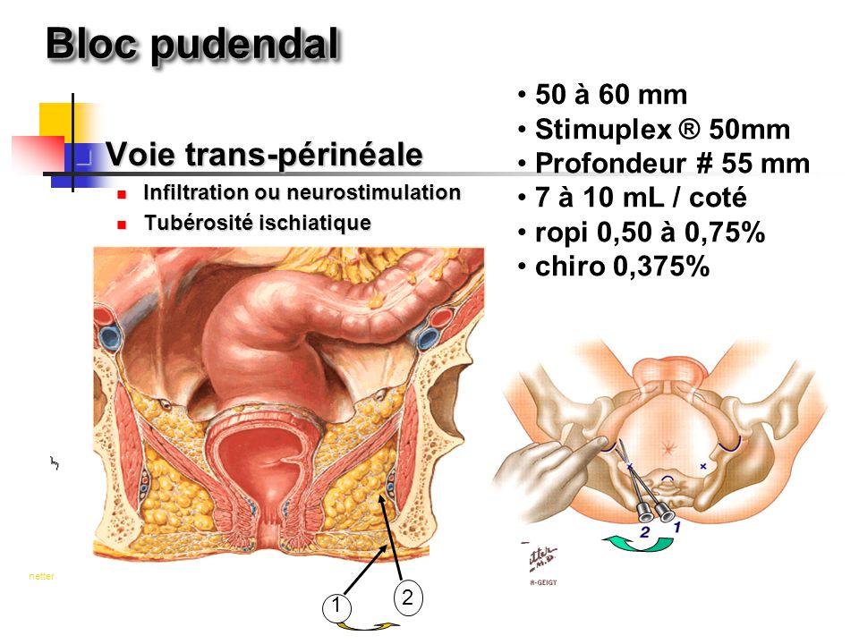 Bloc pudendal Voie trans-périnéale 50 à 60 mm Stimuplex ® 50mm