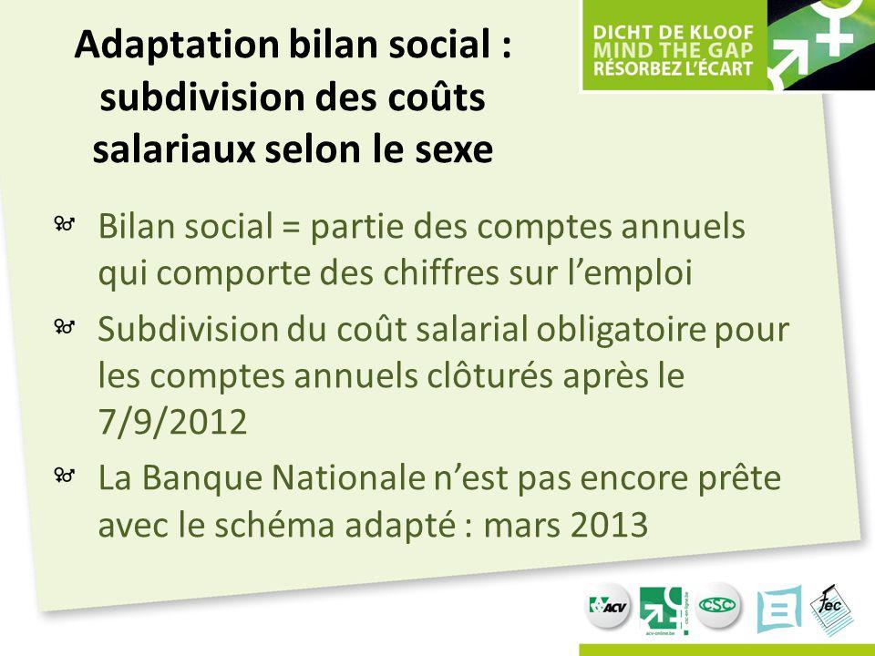 Adaptation bilan social : subdivision des coûts salariaux selon le sexe