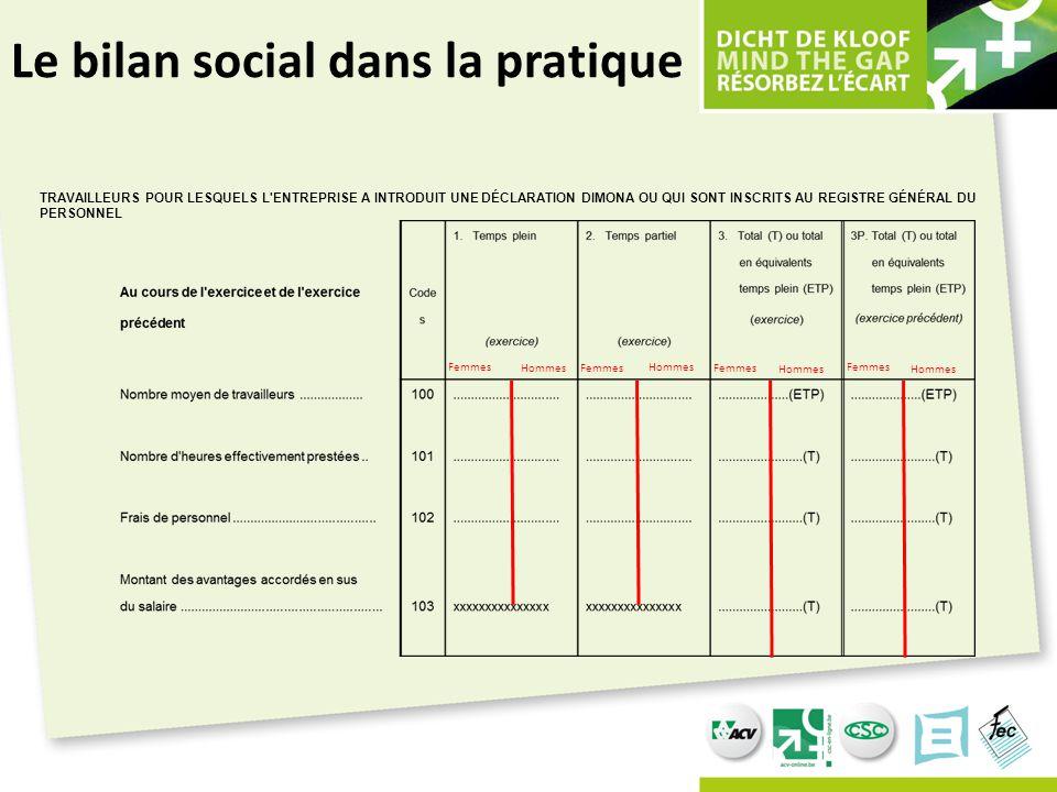 Le bilan social dans la pratique