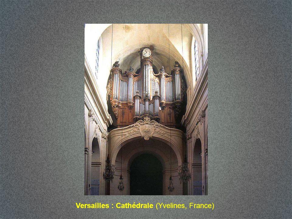 Versailles : Cathédrale (Yvelines, France)
