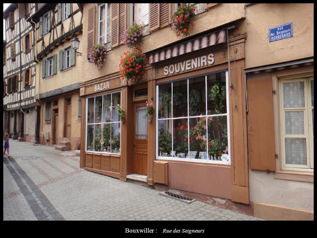 Bouxwiller : Rue des Seigneurs