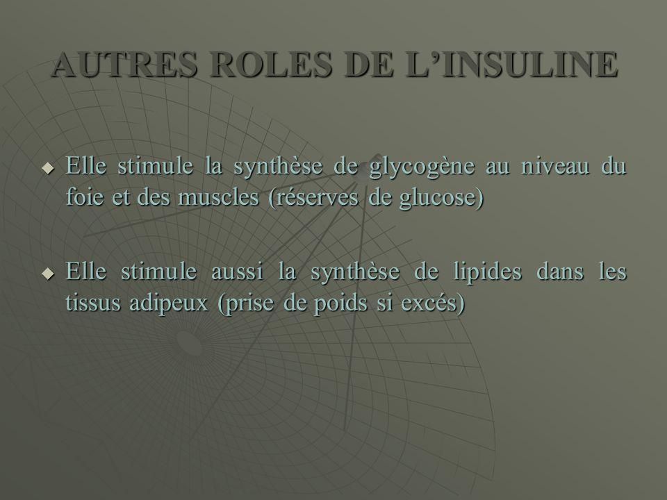 AUTRES ROLES DE L'INSULINE