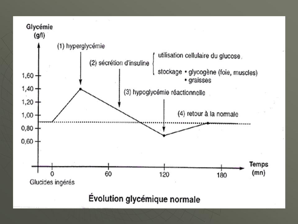 La glycémie évolue en 4 temps