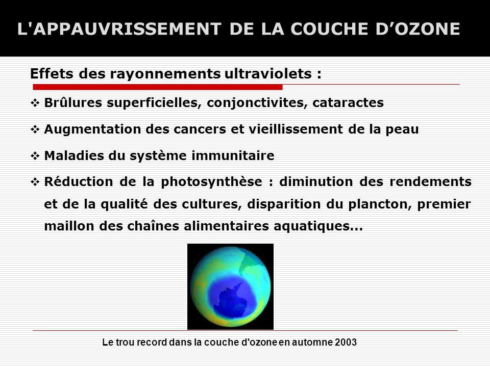 L APPAUVRISSEMENT DE LA COUCHE D'OZONE