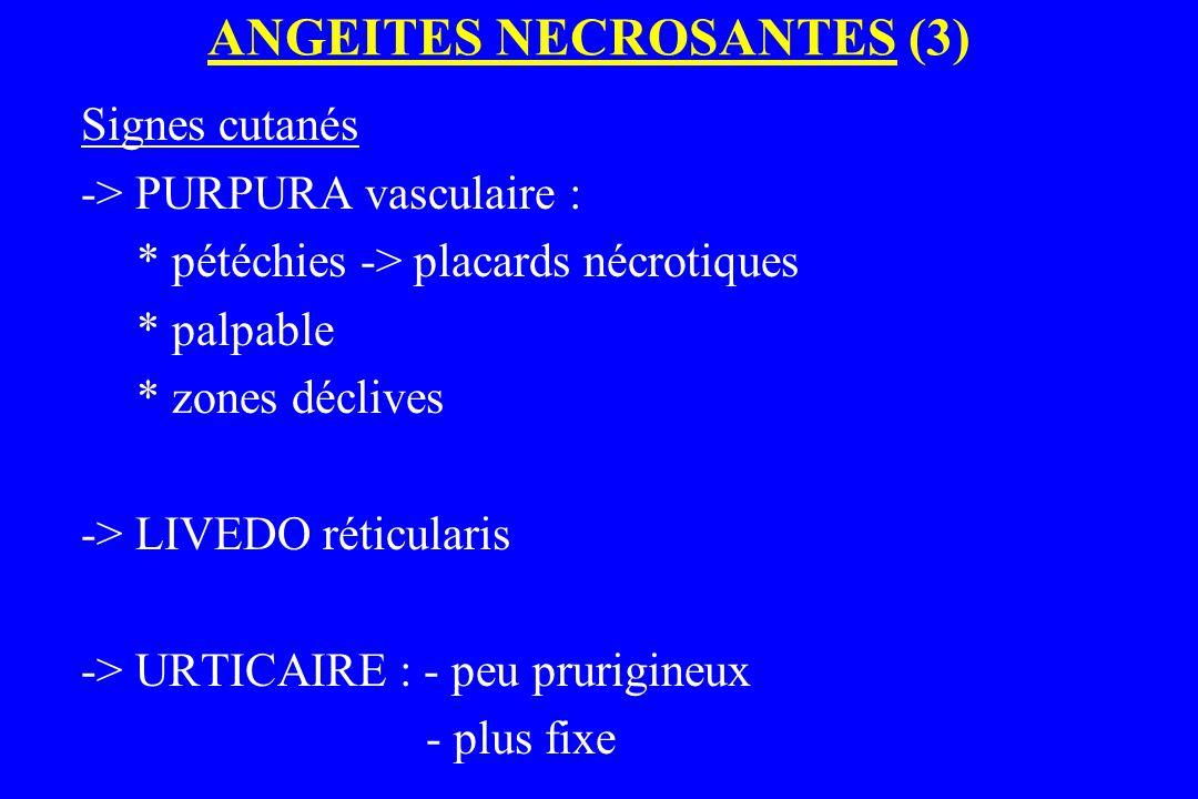 ANGEITES NECROSANTES (3)