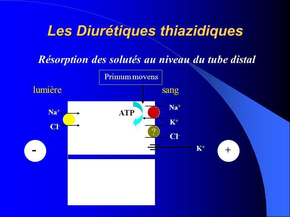 Les Diurétiques thiazidiques