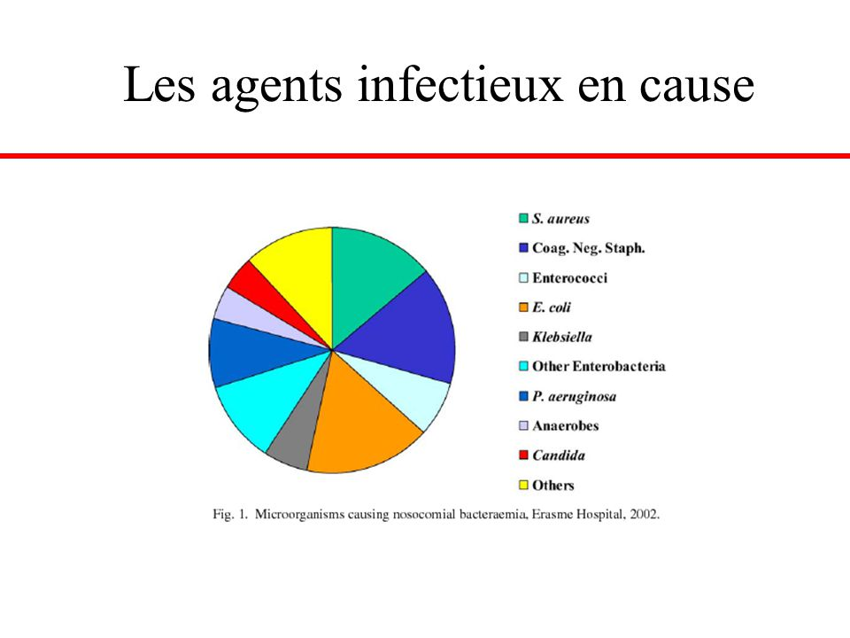 Les agents infectieux en cause