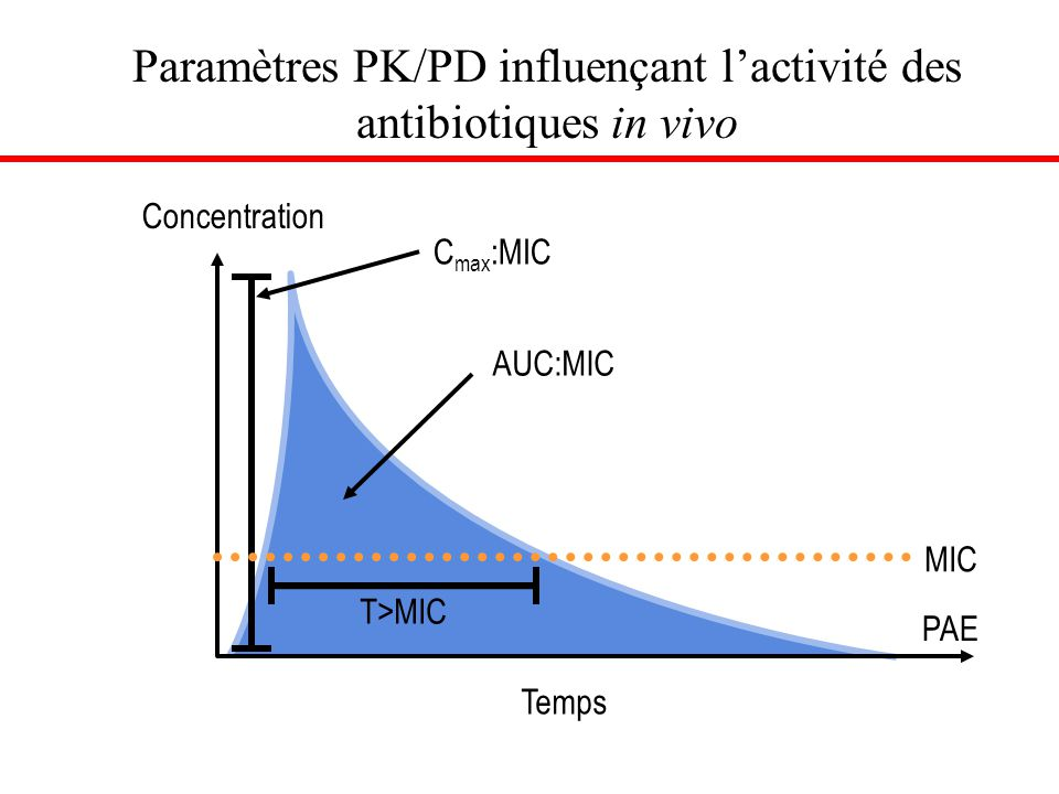 Paramètres PK/PD influençant l'activité des antibiotiques in vivo
