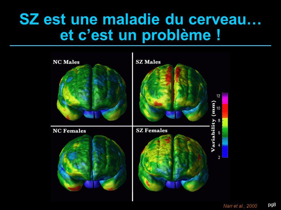 SZ est une maladie du cerveau… et c'est un problème !