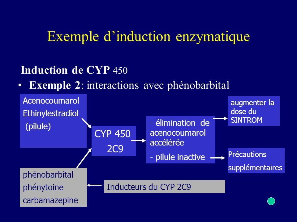 Exemple d'induction enzymatique