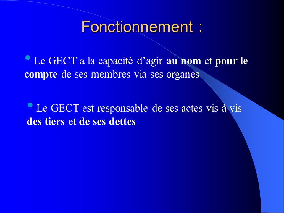 Fonctionnement : Le GECT a la capacité d'agir au nom et pour le compte de ses membres via ses organes.