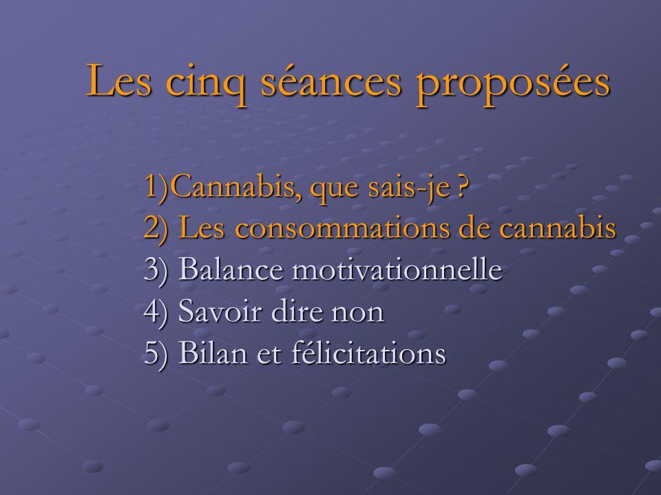Les cinq séances proposées