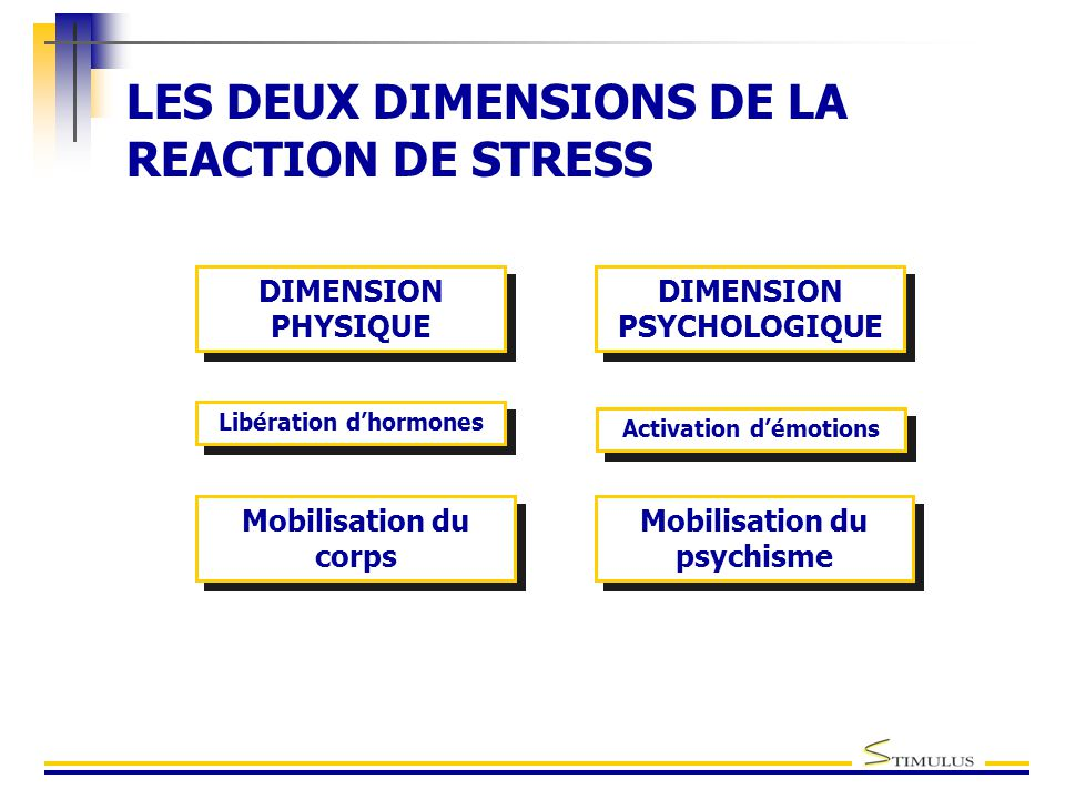 LES DEUX DIMENSIONS DE LA REACTION DE STRESS