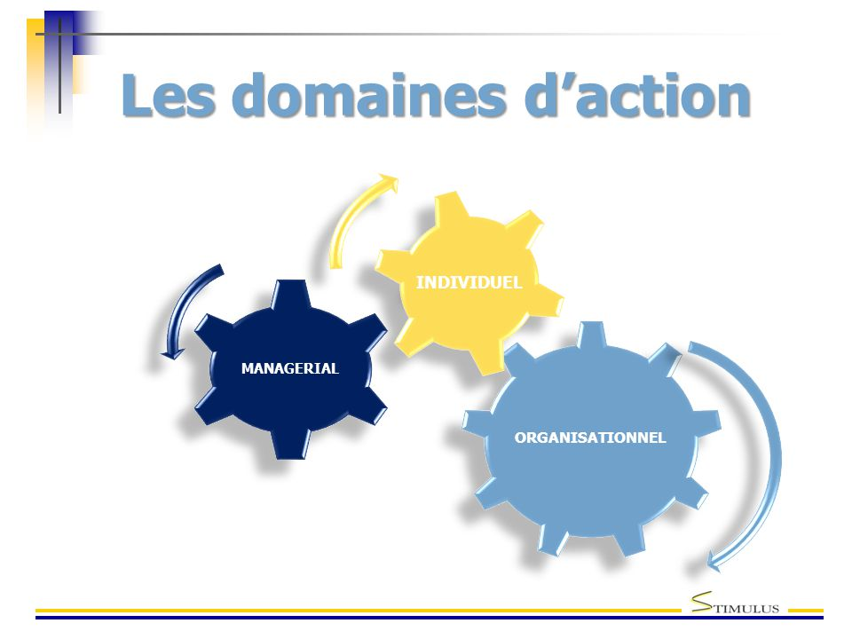 Les domaines d'action INDIVIDUEL MANAGERIAL ORGANISATIONNEL