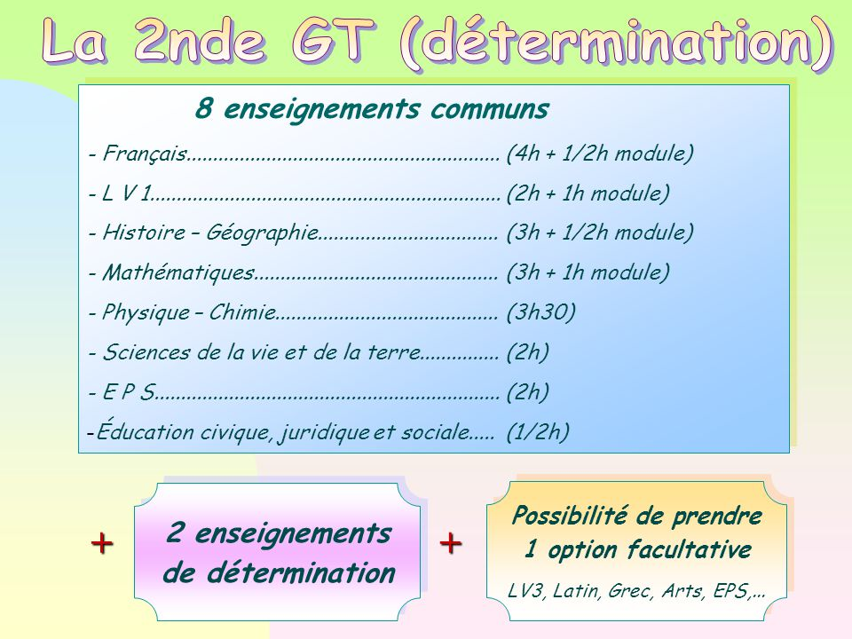 La 2nde GT (détermination) Possibilité de prendre 1 option facultative