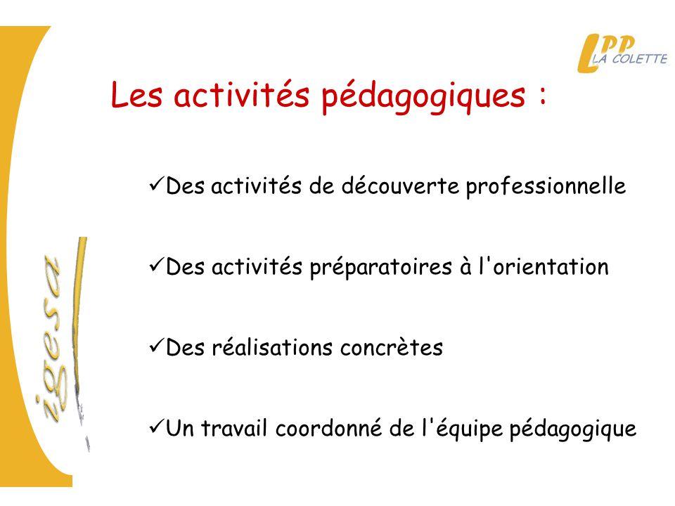 Les activités pédagogiques :