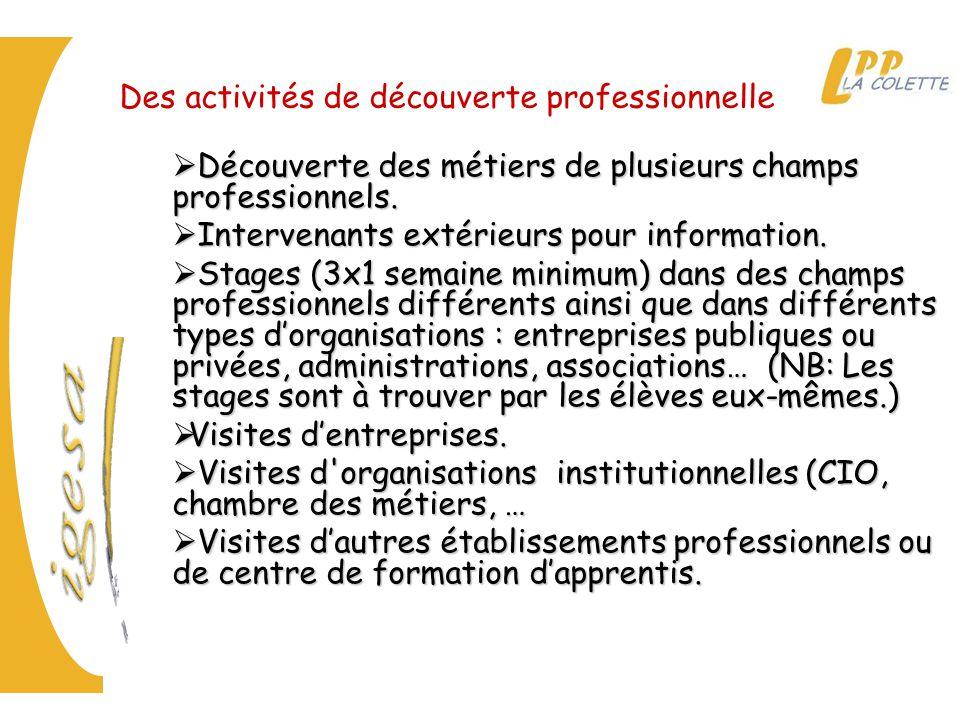 Des activités de découverte professionnelle