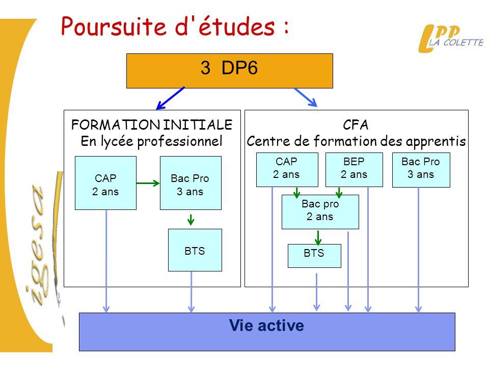 Poursuite d études : 3 DP6 Vie active CFA