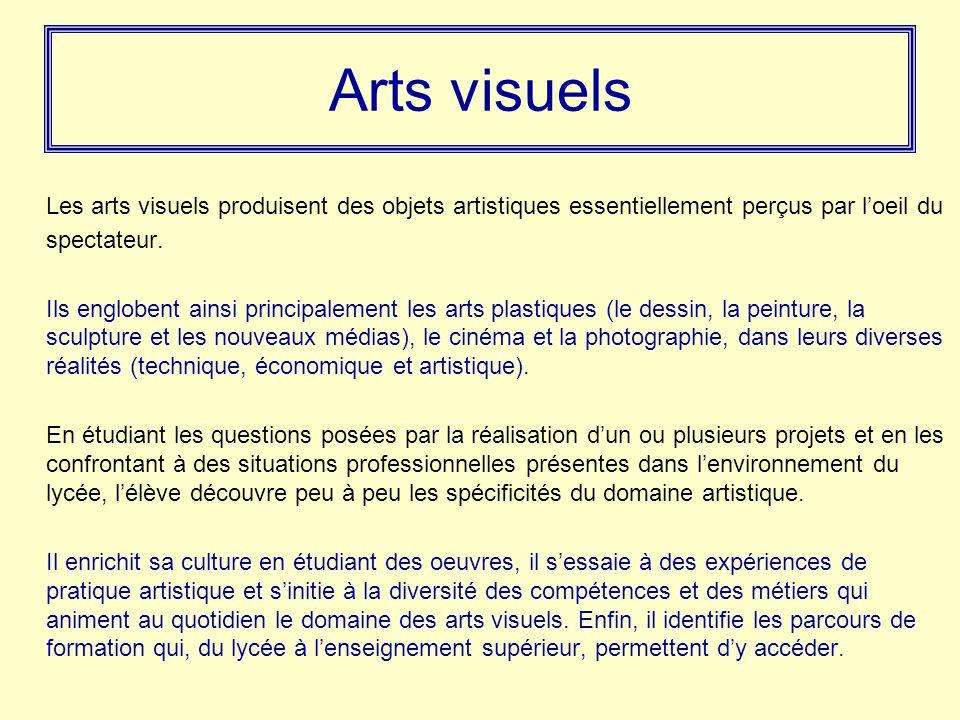 Arts visuels Les arts visuels produisent des objets artistiques essentiellement perçus par l'oeil du spectateur.