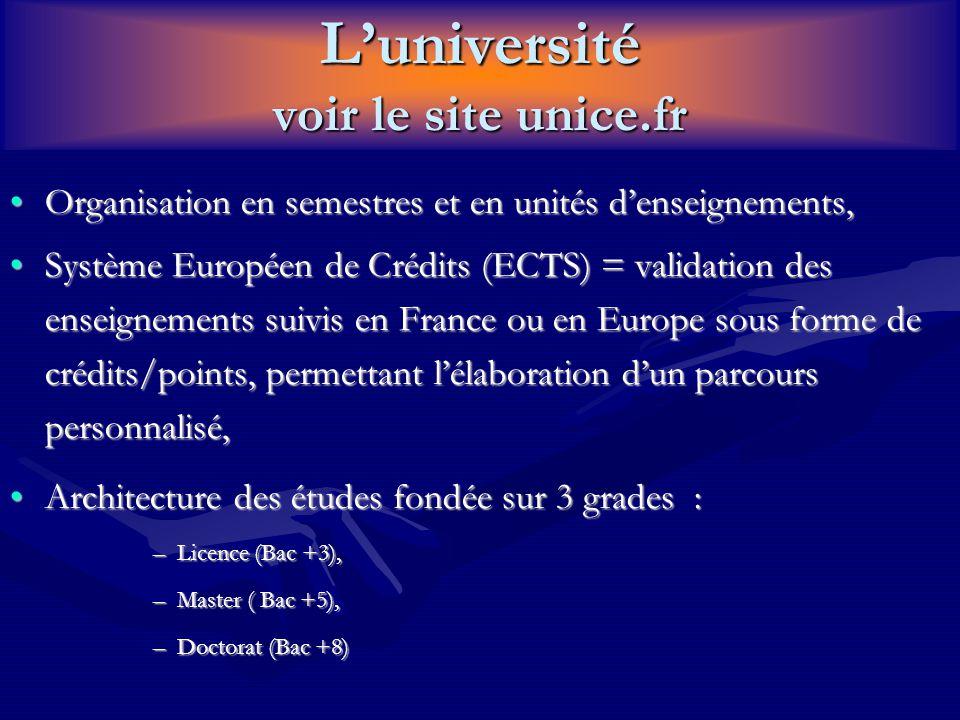 L'université voir le site unice.fr