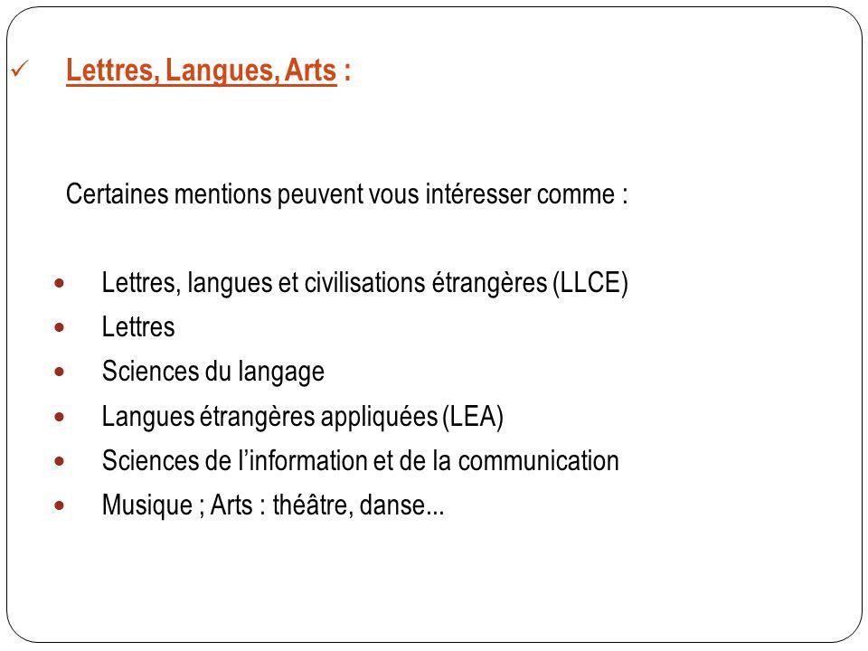 Lettres, Langues, Arts : Certaines mentions peuvent vous intéresser comme : Lettres, langues et civilisations étrangères (LLCE)