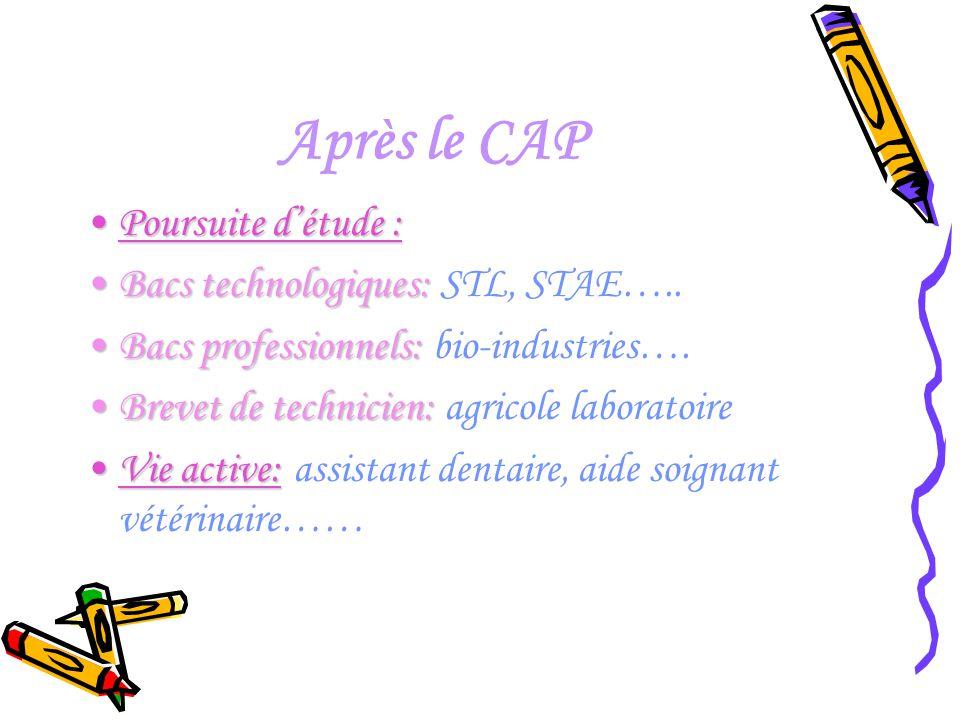 Après le CAP Poursuite d'étude : Bacs technologiques: STL, STAE…..