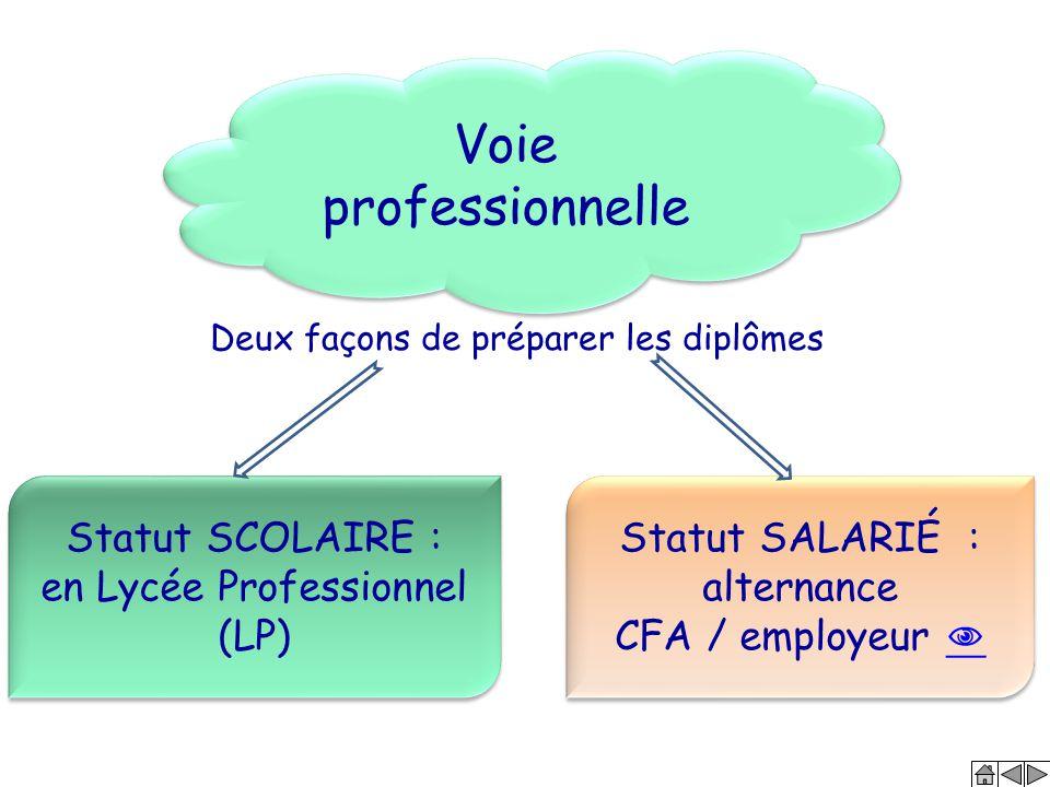 Voie professionnelle Statut SCOLAIRE : en Lycée Professionnel (LP)
