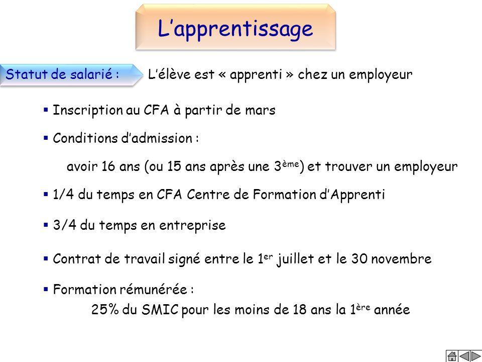 L'apprentissage Statut de salarié :