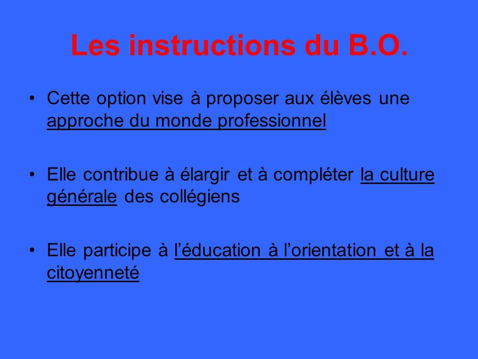 Les instructions du B.O. Cette option vise à proposer aux élèves une approche du monde professionnel.