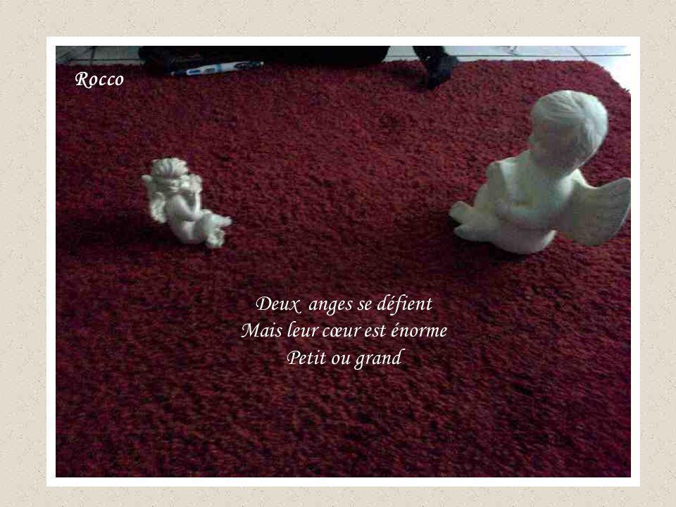Deux anges se défient Mais leur cœur est énorme Petit ou grand