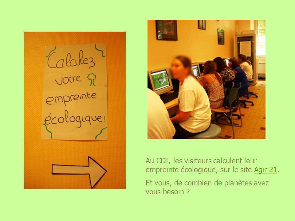Au CDI, les visiteurs calculent leur empreinte écologique, sur le site Agir 21.