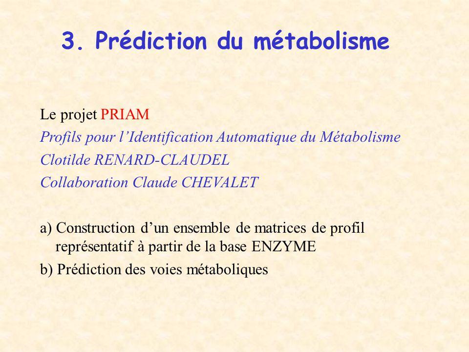 3. Prédiction du métabolisme