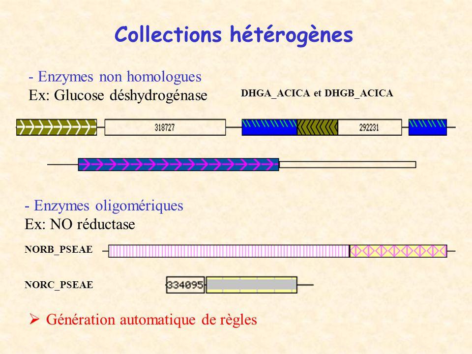 Collections hétérogènes