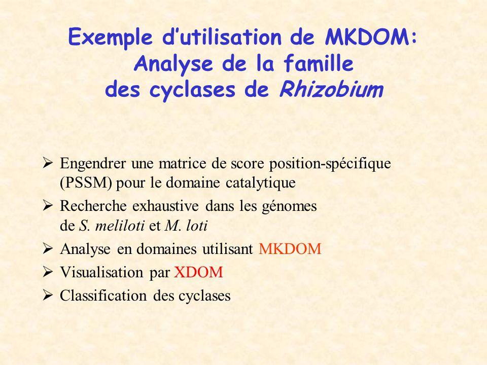 Exemple d'utilisation de MKDOM: Analyse de la famille des cyclases de Rhizobium
