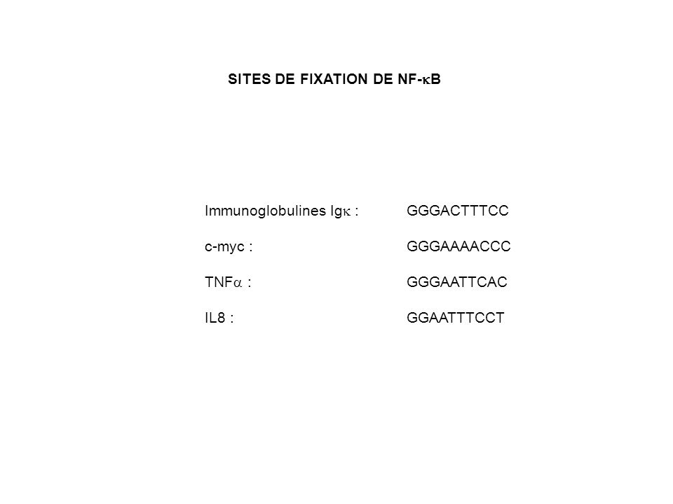 SITES DE FIXATION DE NF-kB